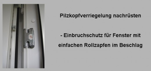 Einbruchschutz-Pilzkopfverriegelung nachrüsten