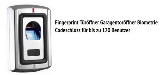 Einbruchschutz-Fingerprint